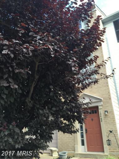 10462 Saint Croix Lane, Manassas, VA 20109 (#PW9564371) :: Pearson Smith Realty