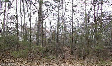 5300 Ridge Road, Spotsylvania, VA 22551 (#SP8681804) :: Pearson Smith Realty