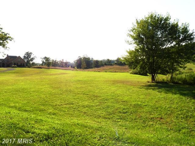 North Frederick Pike, Winchester, VA 22603 (#FV7659547) :: LoCoMusings