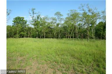 30 Old Mountain Run, Purgitsville, WV 26852 (#HS8286201) :: Pearson Smith Realty