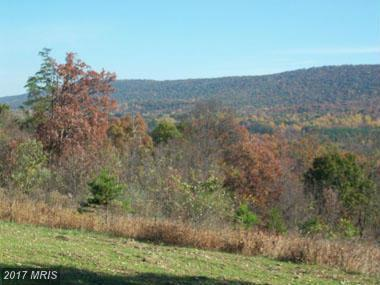 Posey Hollow, Berkeley Springs, WV 25411 (#MO8242744) :: LoCoMusings