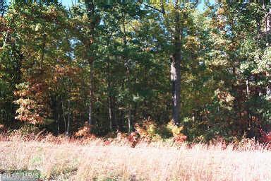 6121 Bills Road, Mineral, VA 23117 (#SP8273909) :: Pearson Smith Realty