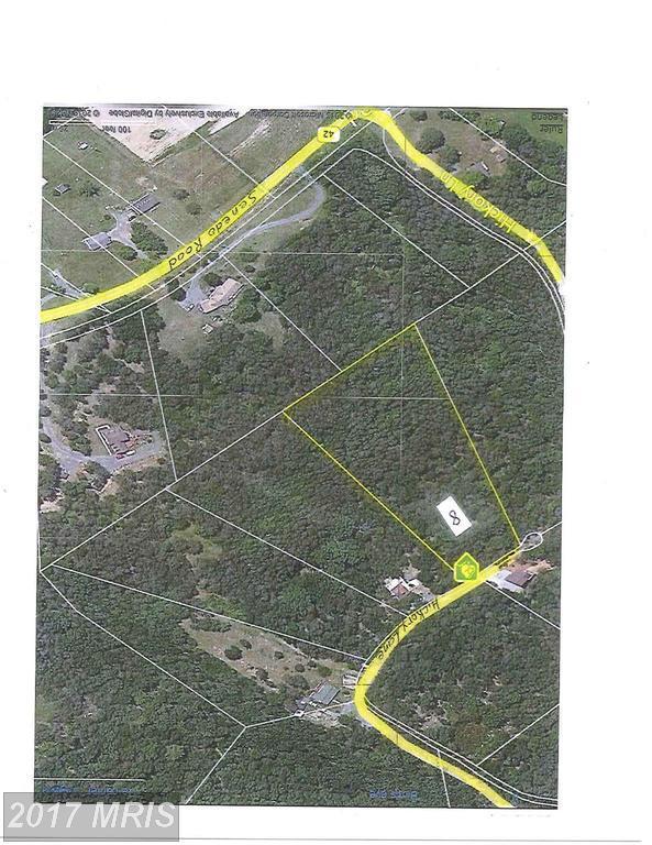 0 Hickory Lane, Mount Jackson, VA 22842 (#SH8120013) :: LoCoMusings
