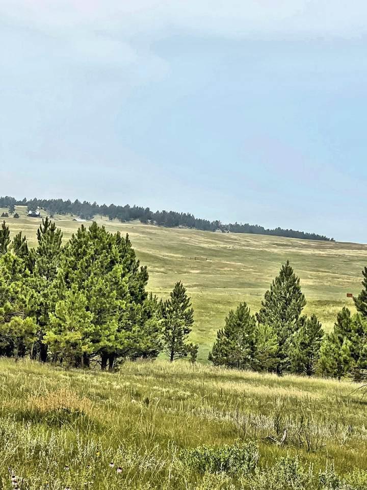 TBD Canyon Rim Ranch - Photo 1