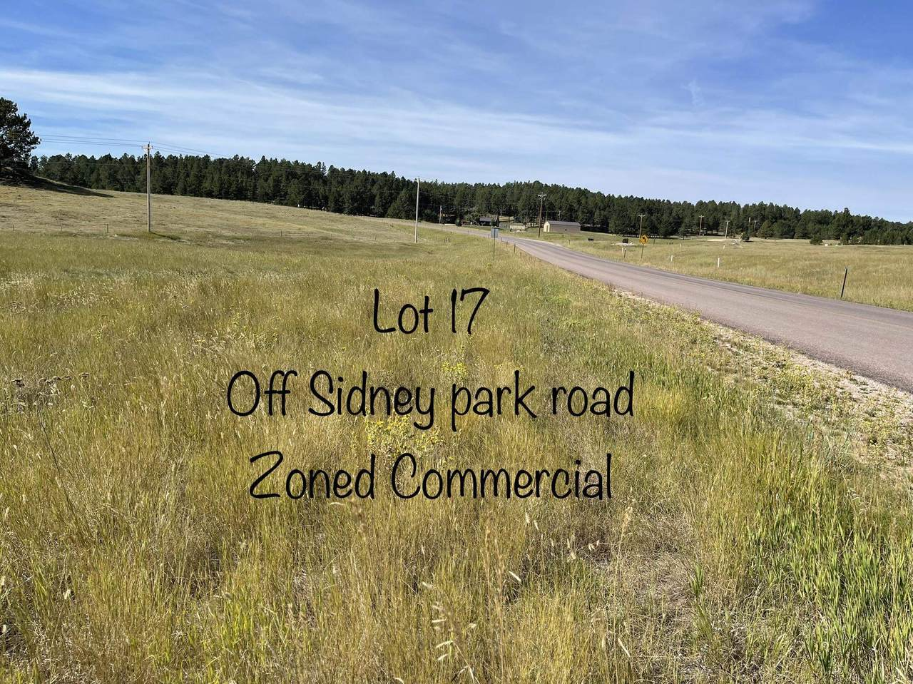 LOT 17 Sidney Park Road - Photo 1