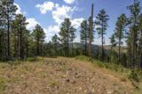 11825 Golden Ridge Road - Photo 1