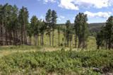 11825 Golden Ridge Road - Photo 3