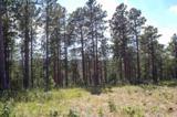 11825 Golden Ridge Road - Photo 4