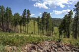 11825 Golden Ridge Road - Photo 8