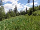 TBD Terry Peak Road - Photo 10