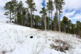 Lot 29 Timberline Road - Photo 10
