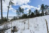 Lot 29 Timberline Road - Photo 12