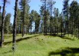 Lot 6 Eagle Ridge - Photo 1