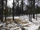 Lot 10 Eagle Ridge - Photo 10