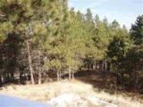 447 Pine - Photo 1