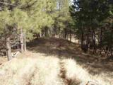 447 Pine - Photo 4