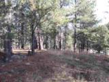 447 Pine - Photo 5