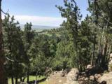 TBD Robbers Roost Rd. - Photo 9