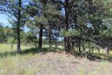 Tract 4 Lone Elk Subd I - Photo 9