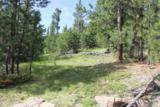 TBD Mountain Lion Road - Photo 1