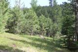 TBD Mountain Lion Road - Photo 5