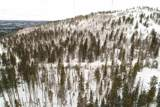 TBD Terry Summit Road - Photo 5