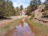 TBD Sheps Canyon Road - Photo 6