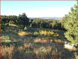 Tract 6 Lookout Vista Road - Photo 3
