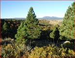 Tract 8B Lookout Vista Road - Photo 4