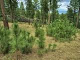 Lot 11 Cedar Berry Trail - Photo 12