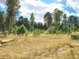 Lot 11 Cedar Berry Trail - Photo 18