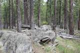 TBD Caledonia Trail - Photo 6