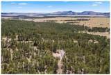 25572 Custer Highlands - Photo 30