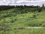 TBD Tahencala Ridge Road - Photo 6