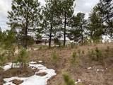 TBD-2115 Bison Pass - Photo 14