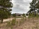 TBD-2115 Bison Pass - Photo 15