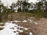 TBD-2115 Bison Pass - Photo 18