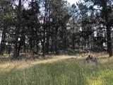 TBD Fox Ridge Road - Photo 18