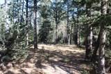12052 Little Elk Road - Photo 2
