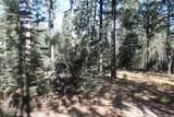 12052 Little Elk Road - Photo 3