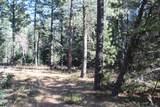 12052 Little Elk Road - Photo 4