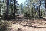 12052 Little Elk Road - Photo 6