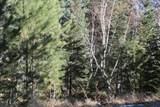 12052 Little Elk Road - Photo 9