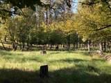 13277 Three Meadows Road - Photo 15