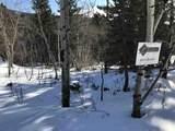 11028 Eagle Trail - Photo 11