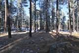 TBD Tin Cup Trail - Photo 1