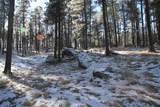 TBD Tin Cup Trail - Photo 10