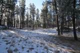 TBD Tin Cup Trail - Photo 11