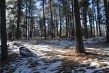 TBD Tin Cup Trail - Photo 13