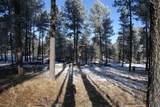 TBD Tin Cup Trail - Photo 2